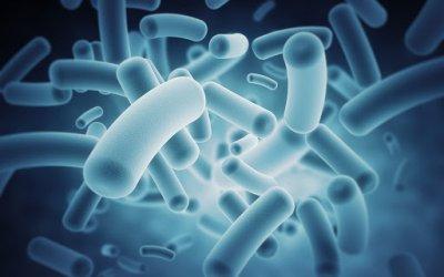 Μικροβίωμα